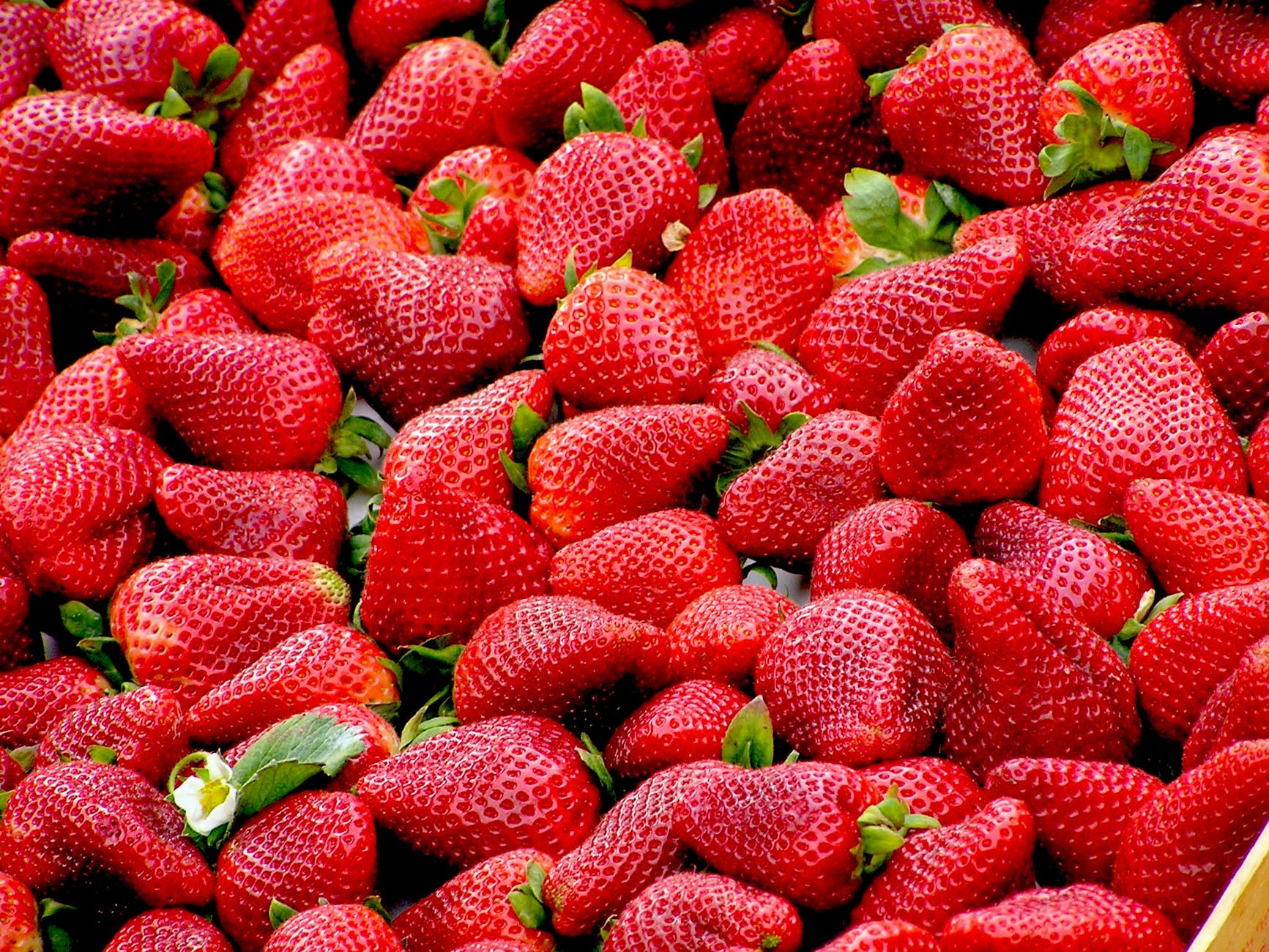 Strawberries are on the dirty dozen list. It's better to buy organic when it comes to this fruit!